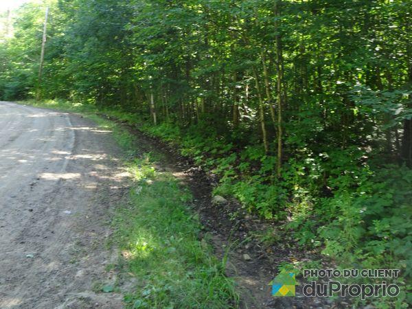 Lot -  chemin de la Montagne \chemin du Ruisseau, Mandeville for sale