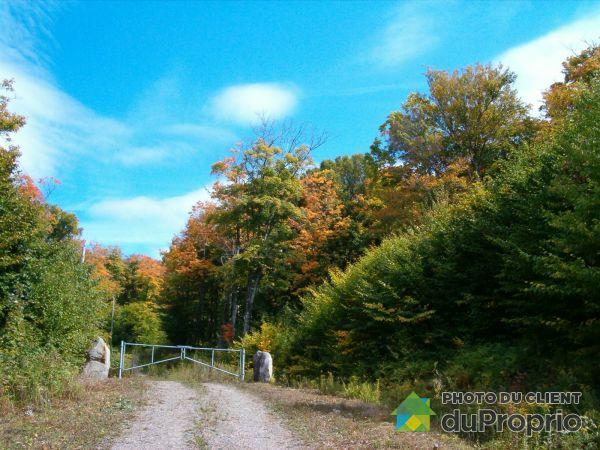 , chemin du Lac-Mulet, St-Faustin-Lac-Carré à vendre