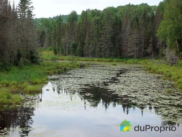 Environnement - Développement Borgo-Livinal, Alleyn-Et-Cawood à vendre