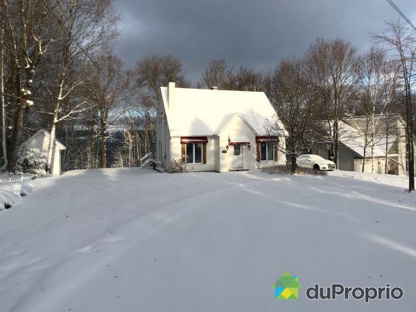 Cottage - 831 rue Dequoy, St-Gabriel-De-Brandon for sale