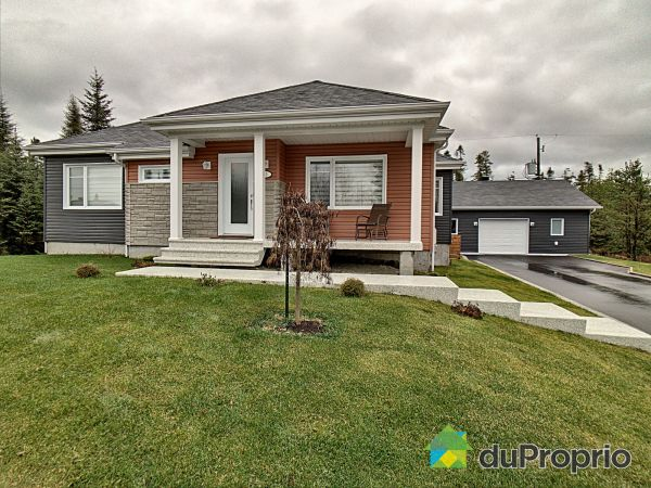 135 rue Dufour, St-David-de-Falardeau for sale