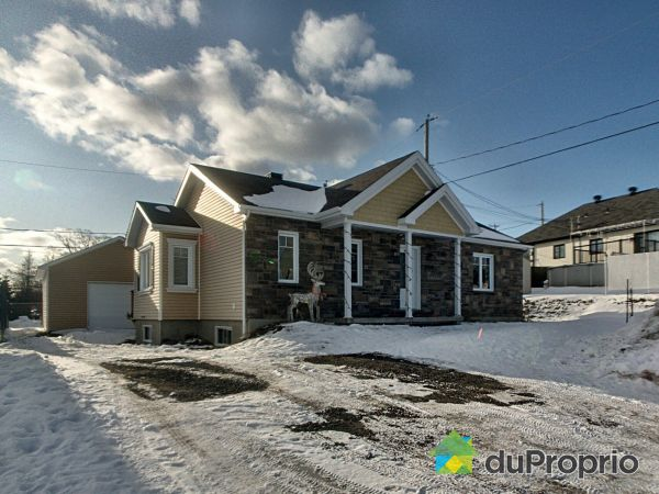 Winter Front - 311 rue Frédérique, St-Charles-De-Bellechasse for sale