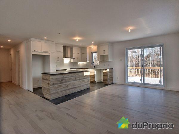 3775 avenue Jacques-Dolbec - Par B2G2 Construction, Shawinigan (Shawinigan-Sud) for sale