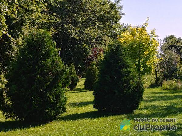 Landscaping - 138 rang Sainte-Catherine, Yamaska for sale