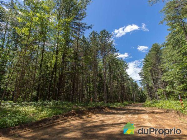 Terrain - Chemin des Hautes-Chutes, Val-Des-Bois à vendre