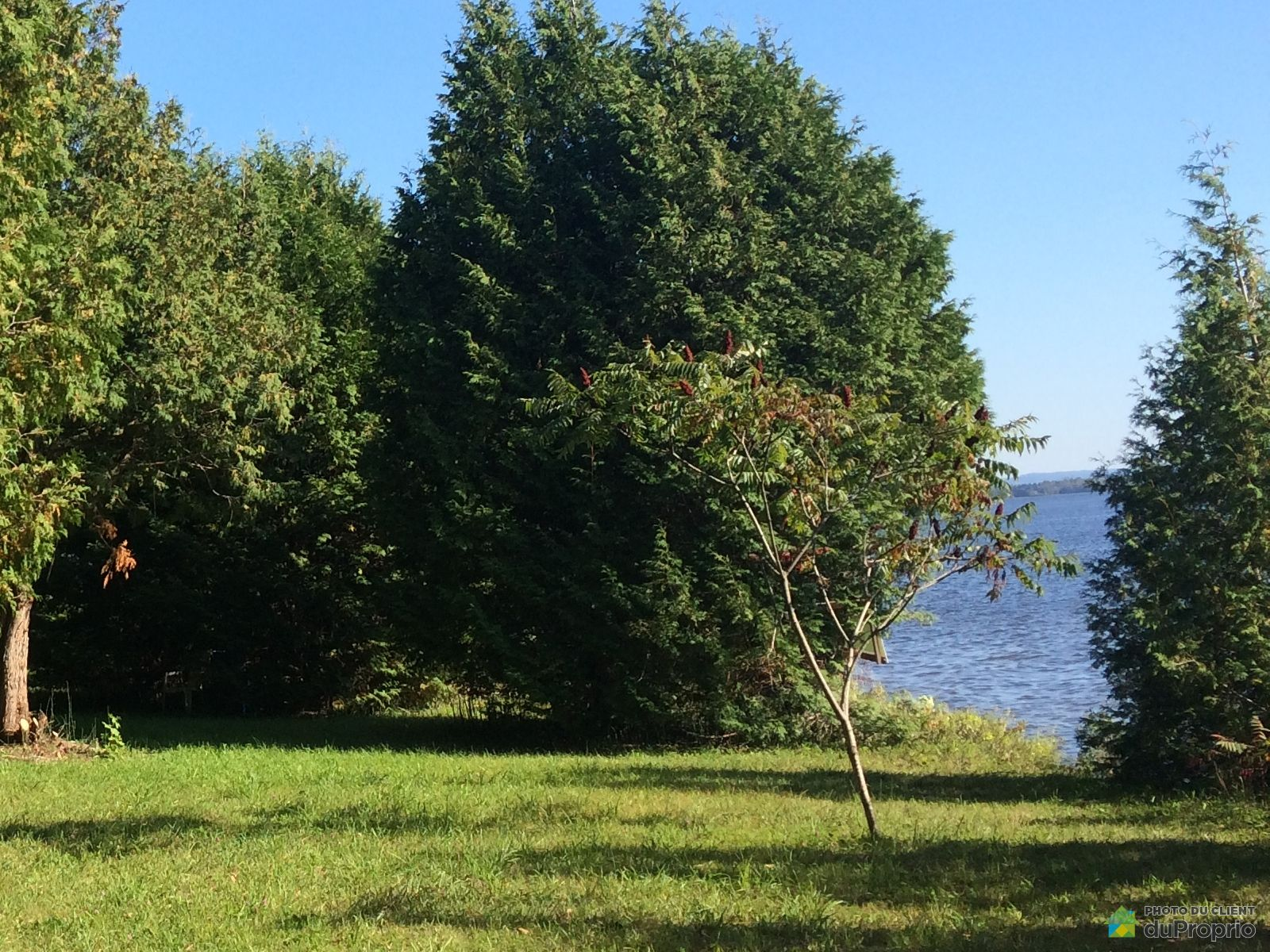 Waterfront -  route des Outaouais, Brownsburg-Chatham for sale