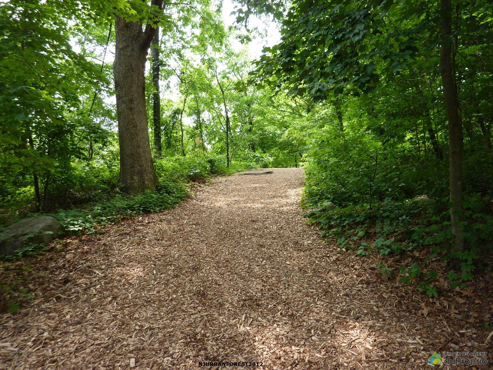 Chemin du Haut-Bois, Val-Des-Monts for sale