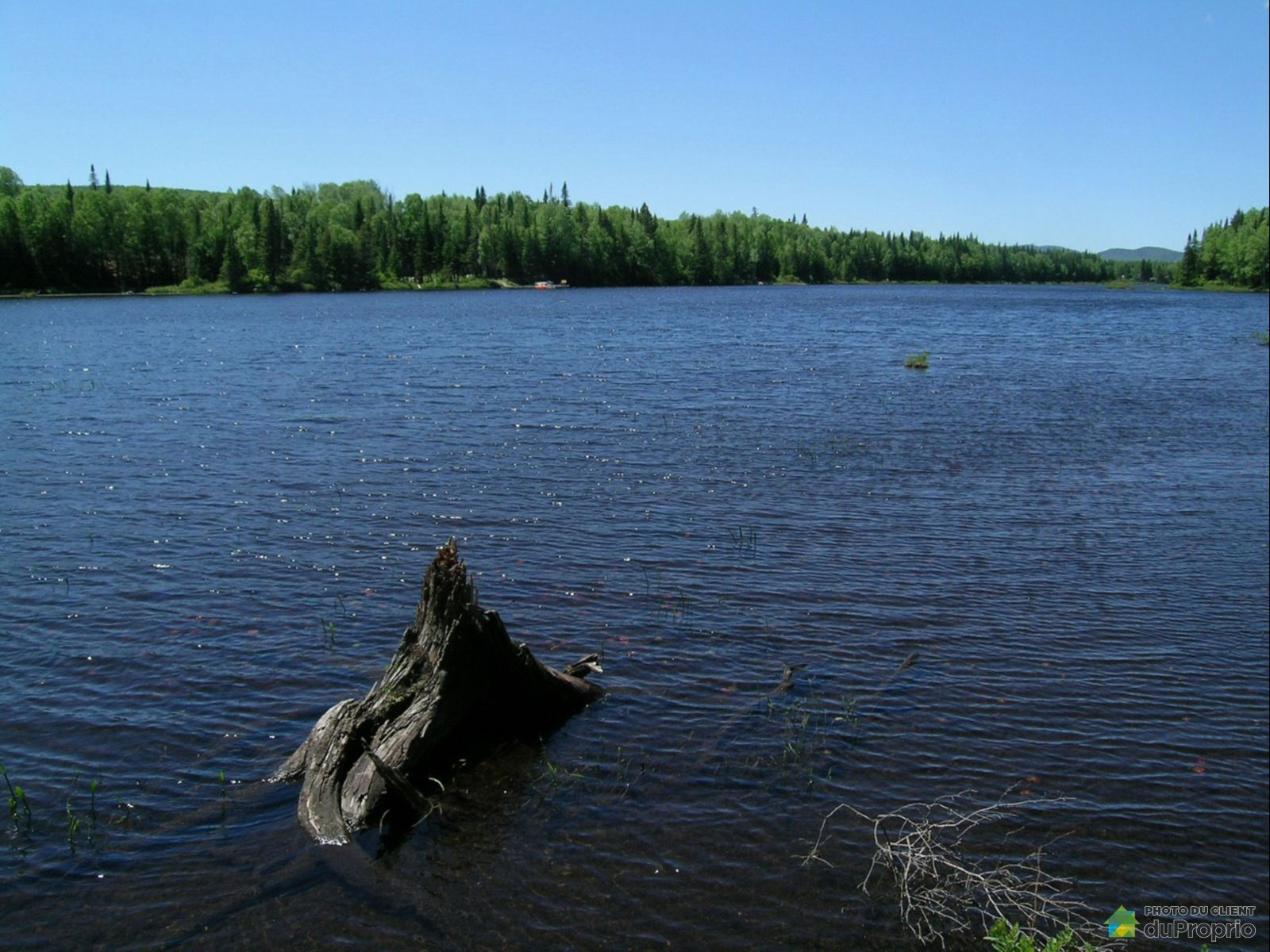 Vue sur le lac - , chemin du Lac-des-Aulnes, St-Donat à vendre