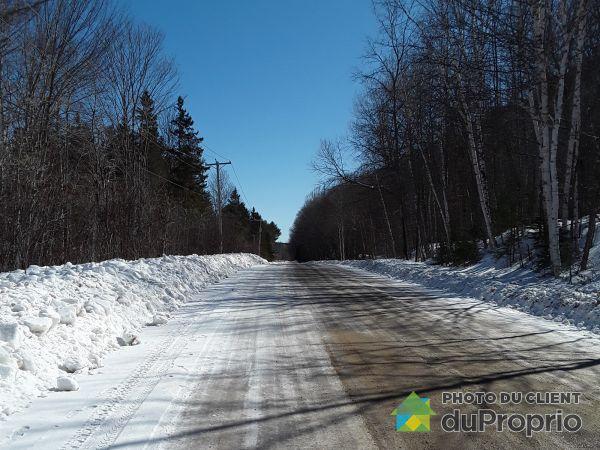 370 chemin de Val-Ombreuse, ND-Du-Laus for sale