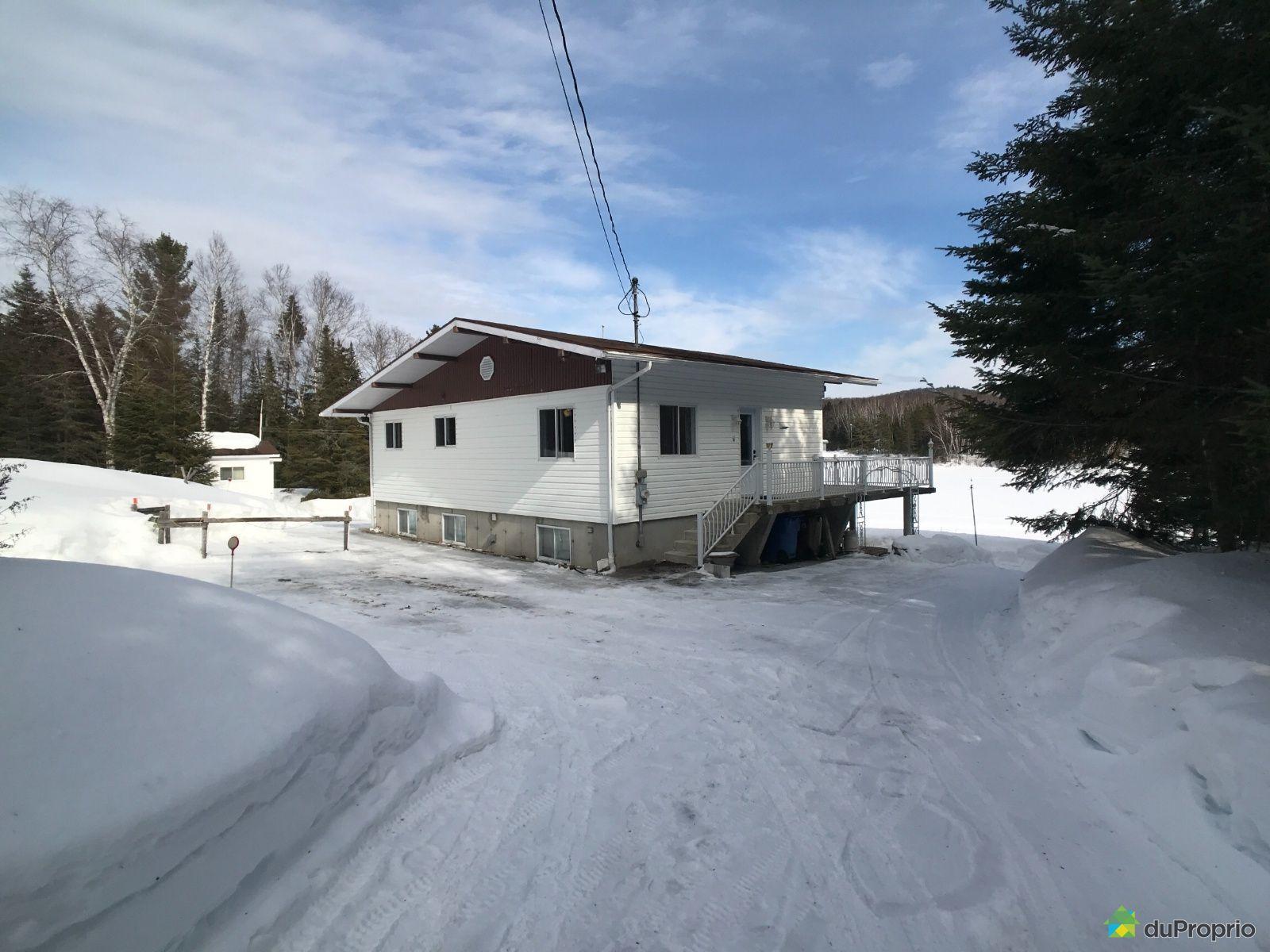 Cour arrière - 105, chemin Fradet, St-Donat à vendre