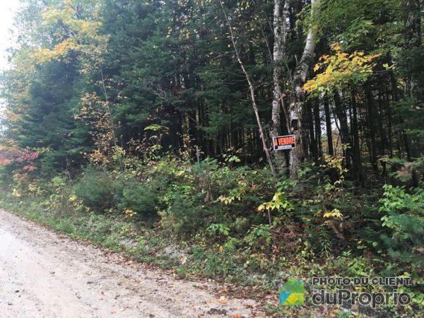 Terrain - xxx, chemin de Ryanville, Lac-Ste-Marie à vendre