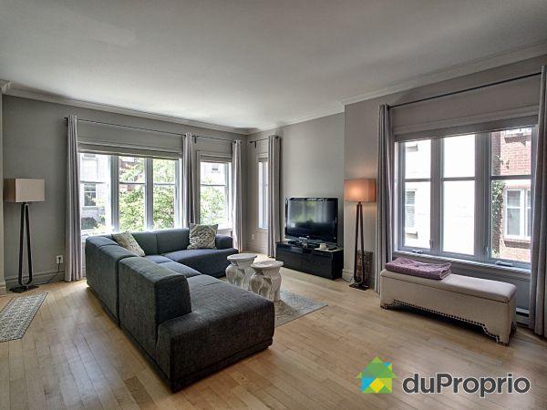 Open Concept - 833 rue Saint-Timothée, Ville-Marie (Centre-Ville et Vieux Mtl) for sale