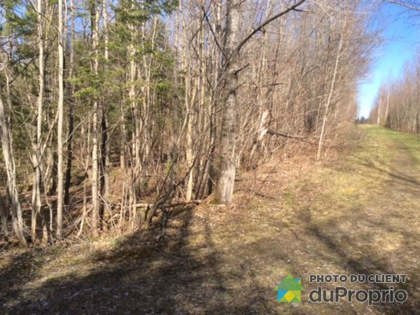 Woods -  chemin du Pont-Blanc, Beaulac Garthby for sale