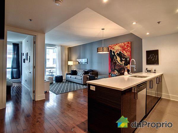 Condo - 406-370 rue Saint-André, Ville-Marie (Centre-Ville et Vieux Mtl) for sale