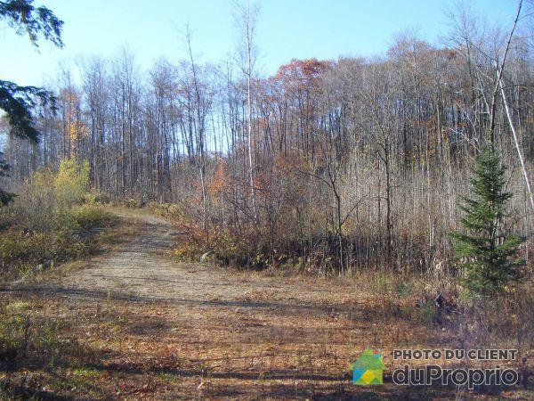 Terrain - Terrain résidentiel Route 309, L'Ange-Gardien-Outaouais à vendre