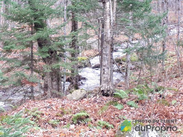 Creek - 15 chemin du Hibou, Eastman for sale