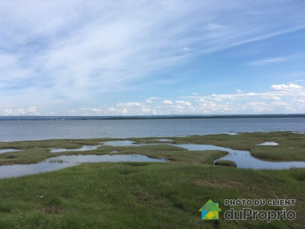 Vue sur le fleuve - 3102, chemin de L'Île, ND-Des-Sept-Douleurs à vendre
