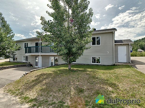 11-13-15-17, rue Dufour, St-Hilarion for sale
