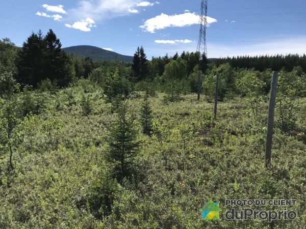 rang de Saint-Placide Sud, Baie-St-Paul for sale