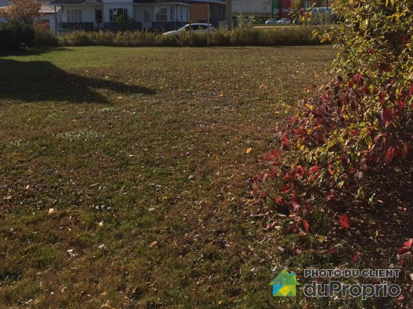 Rear View - 278 rue Saint-Jean Baptiste, Baie-St-Paul for sale