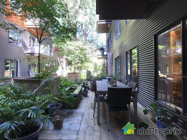 Terrasse - 115-201, rue Charlotte, Ville-Marie (Centre-Ville et Vieux Mtl) à vendre