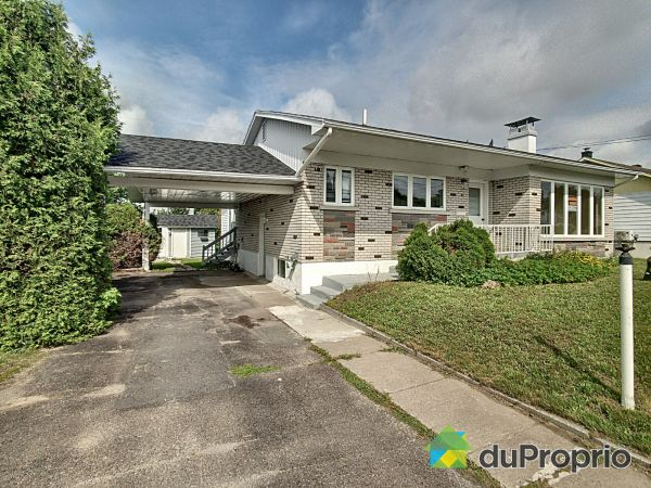 98 rue Demontigny, Ste-Agathe-Des-Monts for sale