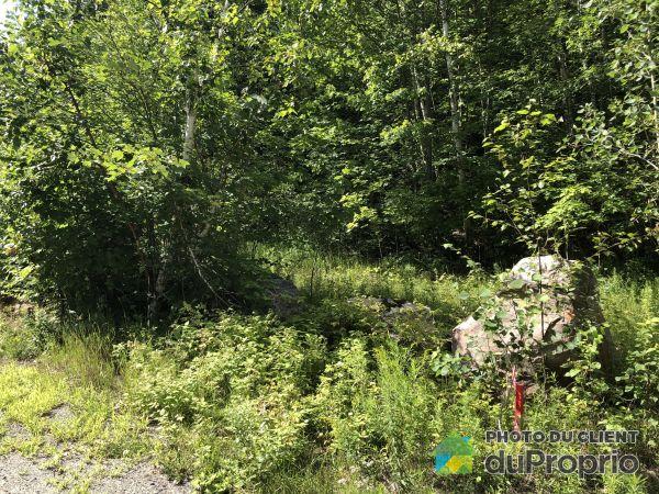 Woods -  chemin des Merisiers, La Conception for sale
