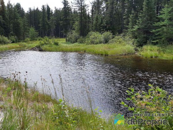 Pond -  4e Rang, Dalmas for sale