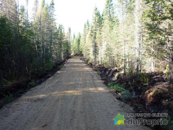 Environnement - 1, chemin de la Réserve, St-Aime-Des-Lacs à vendre
