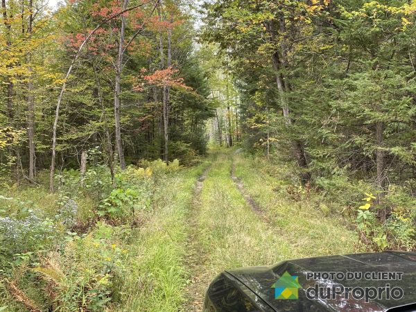 Woods - 242 route 105, Bouchette for sale