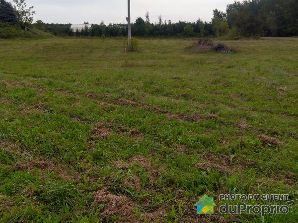 1600, 5e Rang Ouest, Drummondville (Drummondville) à vendre