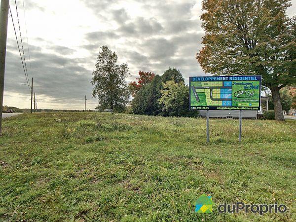 L'arrondissement du boisé, Ste-Agathe-de-Lotbinière à vendre