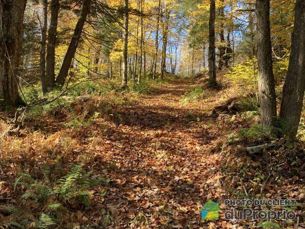Woods - 336 chemin Bellevue, Bolton-Est for sale