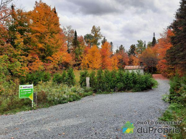 Terrain - 16735, route 335, Chertsey à vendre
