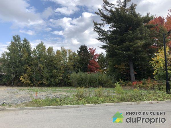 Terrain - , rue Alexandre-Dumas, Sherbrooke (Jacques-Cartier) à vendre