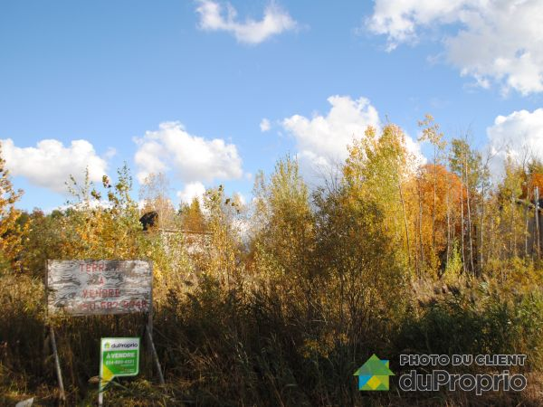 rue Spruce, Lac-Brome (Knowlton) for sale