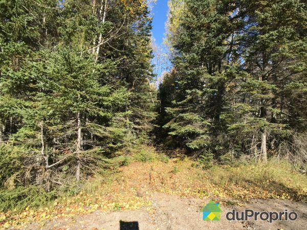 Route 362, 1 terrain  - Par Gestion Baiefil, Baie-St-Paul for sale