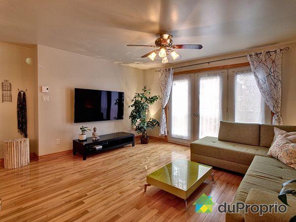 Living Room - 2-4520 rue Saint-Dominique, Le Plateau-Mont-Royal for sale