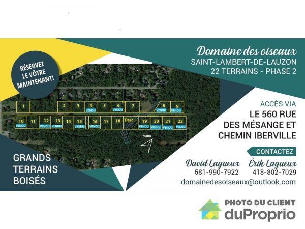 rue des Sittelles - Développement domiciliaire Domaine des oiseaux, St-Lambert-De-Lauzon à vendre