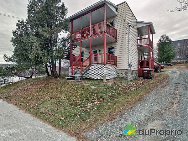 Front Yard - 55-57, rue de la Glacière, Sherbrooke (Jacques-Cartier) for sale