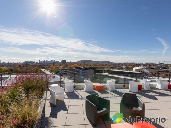 Roof terrace - 416-3100 rue Rachel Est, Rosemont / La Petite Patrie for sale