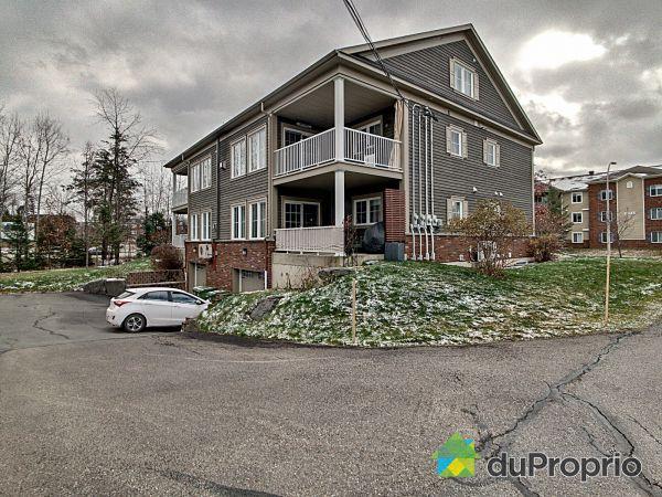 Outside - 2971 rue du Sauvignon, Sherbrooke (Jacques-Cartier) for sale