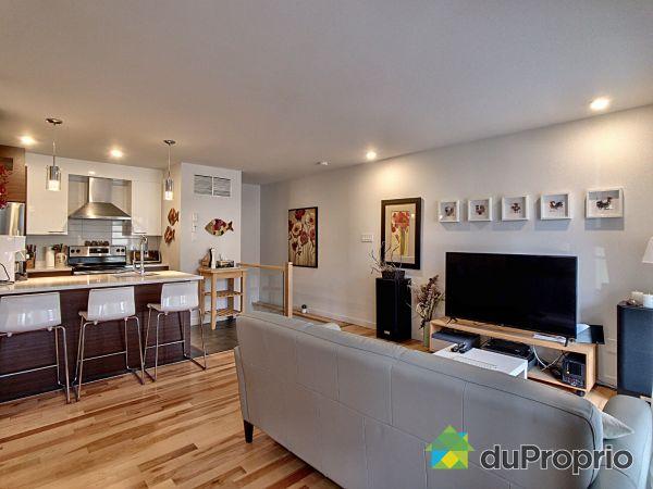 Open Concept - 1-5672 rue Saint-André, Rosemont / La Petite Patrie for sale