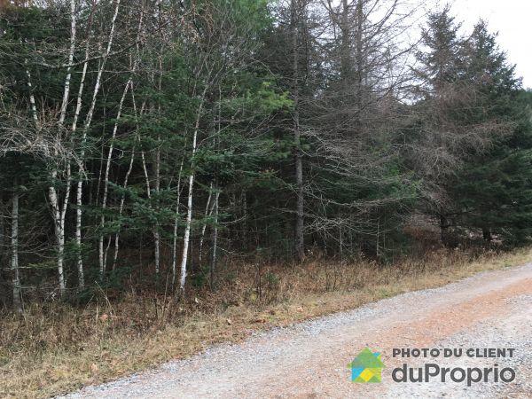 Woods -  chemin des Huards, La Conception for sale