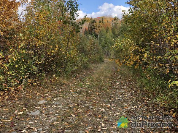 Terrain - , chemin du Castor, St-Adolphe-D'Howard à vendre