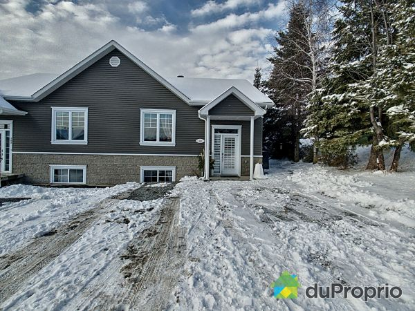 Winter Front - 163 rue Dionne, Sherbrooke (Brompton) for sale