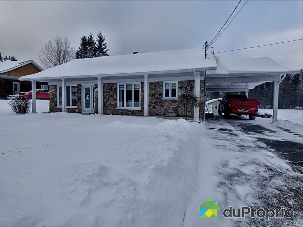 Winter Front - 125 Route 170, L'Anse-St-Jean for sale