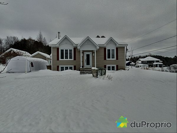 Winter Front - 547 rue Champlain, Dudswell (Marbleton) for sale