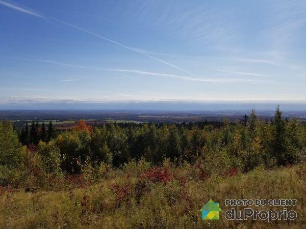 Vue panoramique - 540, 1er Rang Est, Frampton à vendre