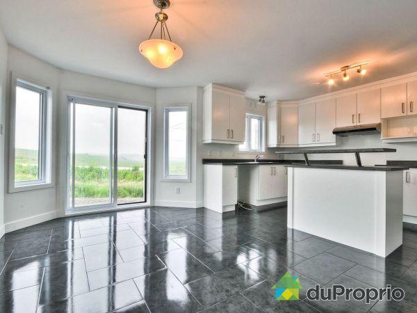 138-140, rue Alexandre Rodrigue - Par Construction Quesnel, Gatineau (Buckingham) à vendre